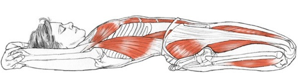 supta-virasana_reclining hero pose yogaanatomy dot net 1-19